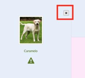 imprimir pedigree perro