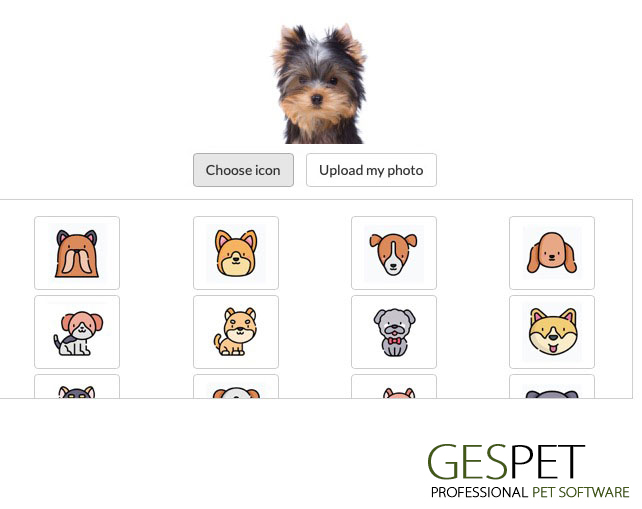 animal file software pet business photo breeds