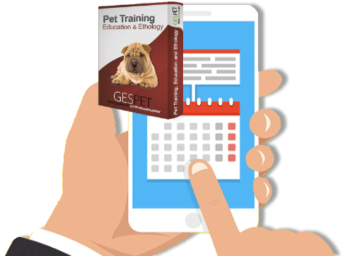 send automatic notifications to customers pet training