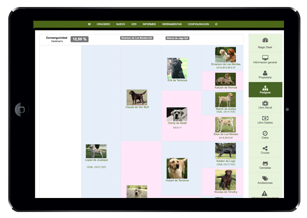 software for breeders, dog breed, dog for sale software
