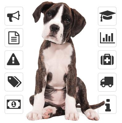 probar programa gratis hotel perros