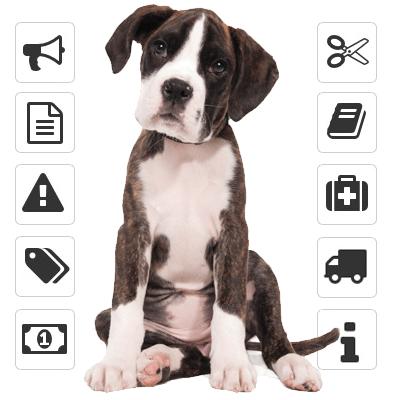 gestión spa canino