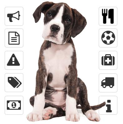 programa pensionado perros